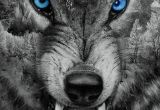 Wolves Drawing Wallpaper Download Angry Wolf Wallpaper by Georgekev now Browse Millions Of