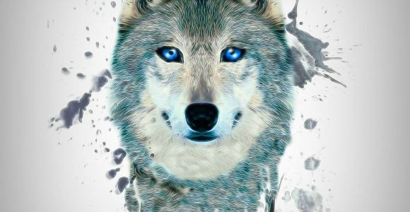 Wolves Drawing Wallpaper Fractal Wolf Wallpaper by S 0d Free On Zedgea