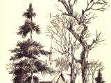 Y Tree Drawing Pin by israel Gonzalez On Pencils D Pinterest Arte Arte Lapiz
